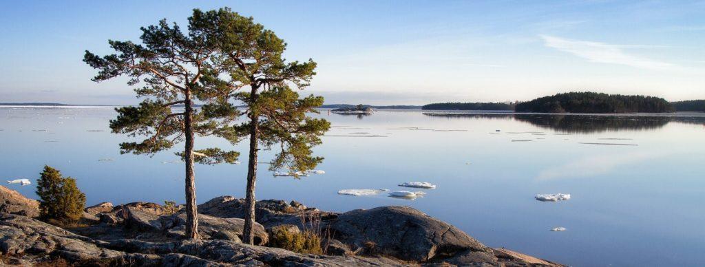 alt-Kuvituskuva: maisema Saimaalta.